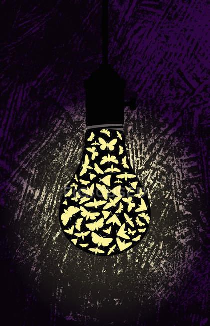 Papillons de nuit à l'ampoule sur fond noir — Photo de stock