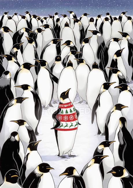 Penguin standing out from crowd and wearing patterned pullover — Stock Photo
