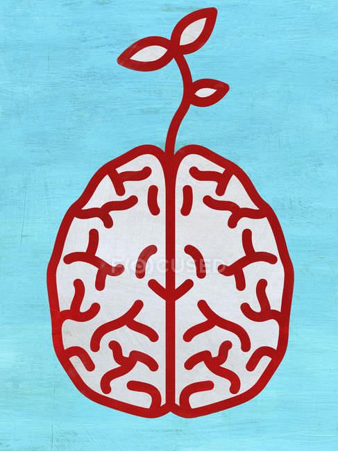 Seedling que cresce fora do cérebro — Fotografia de Stock