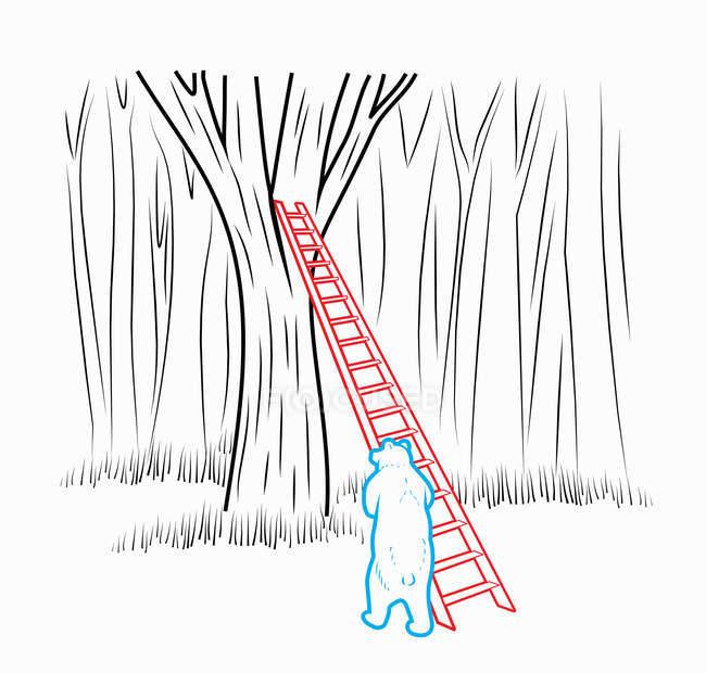 Bear leaning ladder against tree — Stock Photo