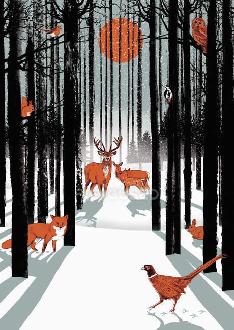 Gruppo di animali nella foresta in inverno — Foto stock
