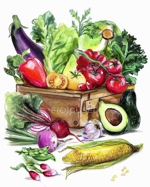 Variazione degli ortaggi freschi in cassa — Foto stock