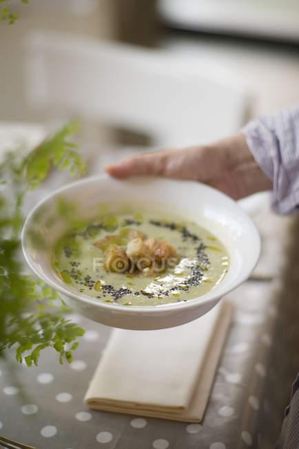 Crema de patatas, inconojo, puerros y semillas negras decoradas con croutones integrales. - foto de stock
