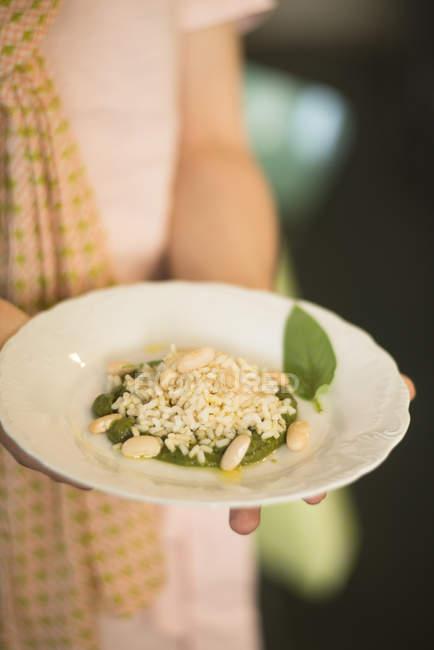 Brokkoli-Püree mit Basilikumblättern, braunem Reis und Cannellini-Bohnen — Stockfoto