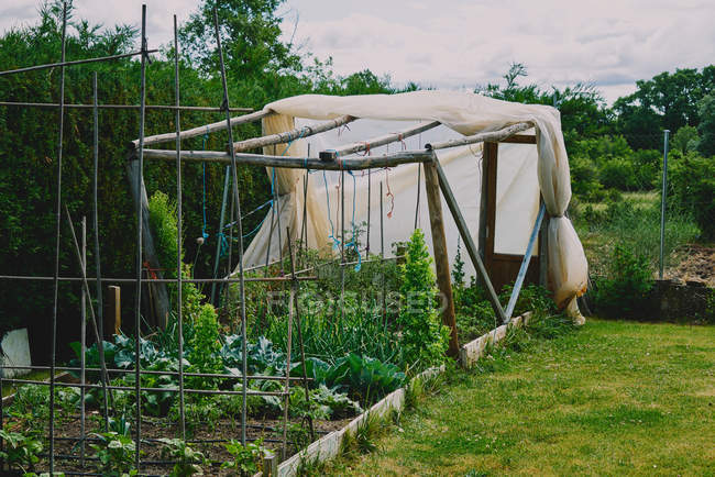 Small greenhouse in backyard, countryside village — Stock Photo