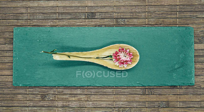 Still life of flower on spoon on a wooden plate with tablecloth — Stock Photo