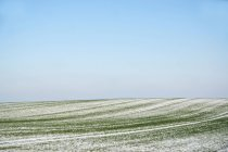 Landscape with snowy field view — Stock Photo