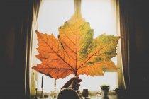 Hand holding fading autumnal leaf — Stock Photo
