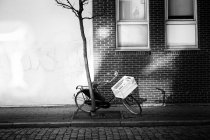 Bicycle parked on street at tree near building house — Stock Photo