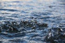 Textura de superfície de água — Fotografia de Stock