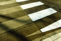 Cropped view of zebra crossing — Stock Photo