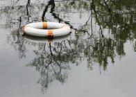 Життя пояса, плаваючі на поверхні спокійна вода з відбитих дерев — стокове фото