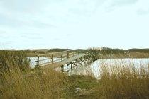 Vista panorámica del puente en campo - foto de stock