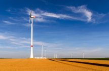 Wind mills producing energy in the field — Stock Photo