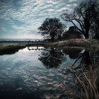Eau du bassin reflétant le ciel et les arbres — Photo de stock