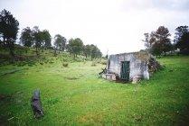 Verfallenen Hütte im grünen Bereich — Stockfoto
