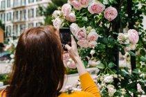 Rückansicht der Frau nehmen Spross der Blumen auf smartphone — Stockfoto