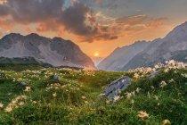 Alpine mountains landscape — Stock Photo