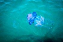 Jellyfish swimming underwater — Stock Photo