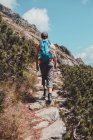 Boy hiking alone in the mountains — Stock Photo