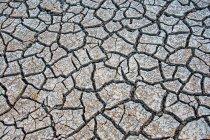 Крупным планом вид пустыни земли — стоковое фото