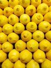 Закрытие ряда желтый лимон — стоковое фото