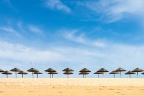 Plage de sable avec parasols — Photo de stock
