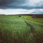 Сельскохозяйственные поля с деревянными Крестьянский дом, ферма — стоковое фото