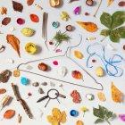 Натюрморт з листя та сміття об'єкти на стіл — стокове фото