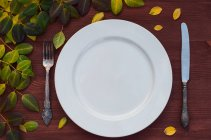 Piastra, coltello e forchetta su superficie di legno marrone — Foto stock