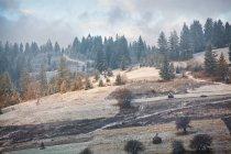 Erster Schnee auf den Bergen Bergen — Stockfoto