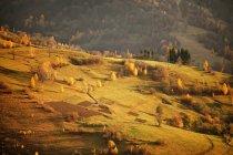 Fall in mountain village. — Stock Photo