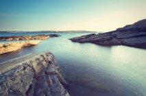 Tallique sur bord de mer rocheux en Irlande — Photo de stock