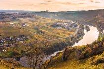 Аэрофотоснимок Рейнланд-Пфальц виноградников и полей — стоковое фото