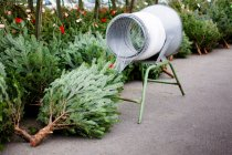 Daytime view of cut Christmas trees and packaging device with net covering — Stock Photo