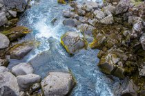 Stream with rocks overgrown by moss — Stock Photo