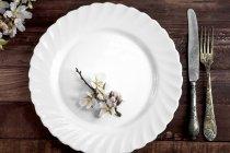 Weiße Schale mit Eisen Besteck — Stockfoto