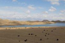 Scenic view of beautiful mountain range landscape — стокове фото