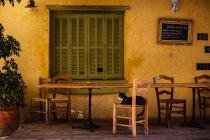Cafe con il gatto che si siede sulla sedia — Foto stock