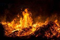 Feu qui brûle dans la nuit — Photo de stock