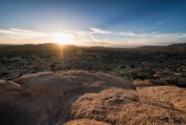 Joshua Tree National Park anzeigen — Stockfoto