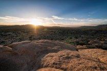 Vista del Parque Nacional Joshua Tree - foto de stock