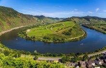 Luftaufnahme des Landes Rheinland-Pfalz Weinbergen und Feldern — Stockfoto