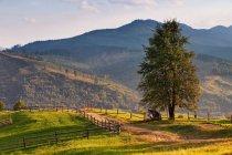 September rural scene in Carpathian mountains. — Stock Photo