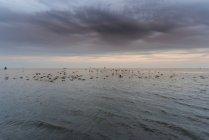 Видом на гарний вид на море і skyline на заході сонця — стокове фото