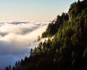 Краєвид Австрійські Альпи — стокове фото