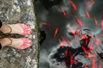 Close-up view of female feet in sandals on river bank with red fish in water — Stock Photo