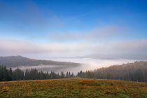 Туманний ранковий вересня в горах — стокове фото