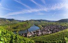 Aerial view of Rhineland-Palatinate vineyards and fields — Stock Photo
