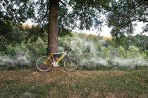 Mountain bike on bank of river — Stock Photo